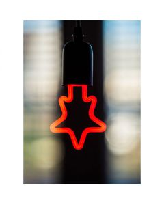 LED neon star rood